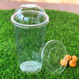 Disposable 12oz 16oz Logo Customized Plastic Pet Cup 5