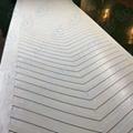 Polyester Conveyor Belt   inflammable