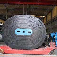 Cold-Resistant Conveyor Belts   high elasticity conveyor belts