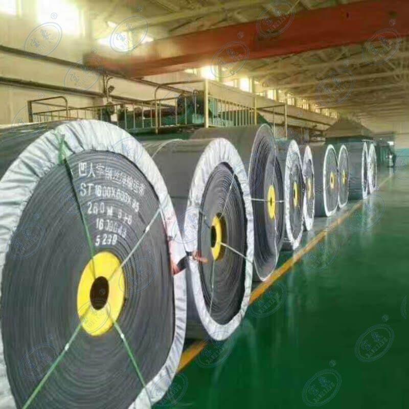 Acid-alkali Resistant Conveyor Belt   conveyor belt wholesaler  4