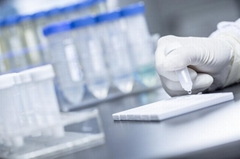Acetaminophen (ACE) Rapid Tests