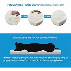 1007PB Pet bed