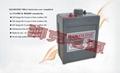 瑞士LEADLINE蓄電池EV