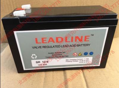 瑞士LEADLINE蓄電池EVR6110供應參數 2