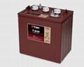 Trojan邱健蓄電池T605鉛酸動力型電池 3