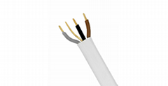 CU/PVC/PVC 6243Y Flat Three And Earth Cable
