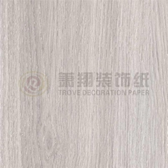 Laminated Flooring Decorative Paper 2902-13