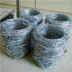 Electro Ga  anized Barbed Wire     concertina wire for sale