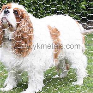 Hot Dipped Ga  anized Hexagonal Wire Netting    hex wire netting   2