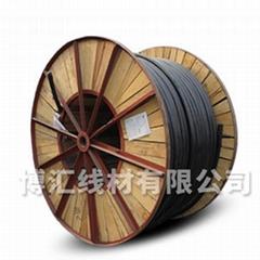 交聯聚乙烯絕緣電力電纜 博匯線材