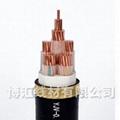 標準銅芯電力電纜 博匯線材