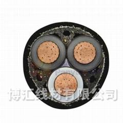 聚氯乙烯絕緣電力電纜 博匯線材