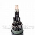 架空線參數控制電纜 博匯線材