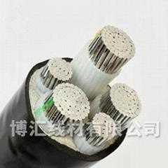 控制電力電纜 博匯線材