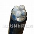 高壓電纜鎧裝10KV高壓架空線 博匯線材 1