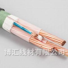 架空线标准铜芯电力电缆