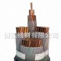鋁合金電纜