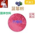 蓝莓粉蓝莓叶黄素酯片 压片糖果代加工 片剂包衣 贴牌oem 3