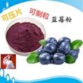 蓝莓粉蓝莓叶黄素酯片 压片糖果
