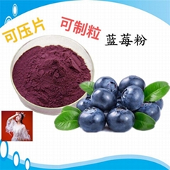 蓝莓粉蓝莓叶黄素酯片 压片糖果代加工 片剂包衣 贴牌oem