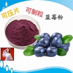 藍莓粉藍莓葉黃素酯片 壓片糖果代加工 片劑包衣 貼牌oem