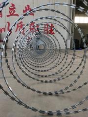 海润监狱护栏刺丝滚笼