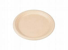 Eco Friendly Disposable & Biodegradable Hotel Plate