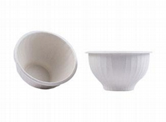 Eco Friendly Disposable & Biodegradable Molded Pulp Containers