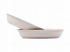 Eco Friendly Biodegradable Disposable Plates
