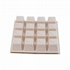 Eco Friendly Disposable  Biodegradable Square Rectangular Container