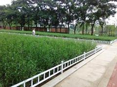 铝合金绿化围栏 草坪护栏
