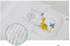 Premium Baby Wipe proposal_Ofmom Korea Company(S.KOREA)