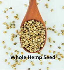 線麻籽 有機常規線麻籽線麻籽出口熱銷