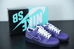 1:1 best quality Nk SB Dunk Low x Concepts joint low-top skateboard shoes