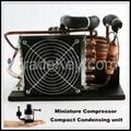 Portable DC Compressor Condensing Unit for Refrigeration