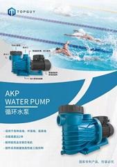 TOPGUY拓威泳池变频水泵 泳池设备