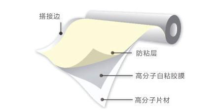 廣東預鋪反粘自粘膠膜防水卷材廠家直銷 5