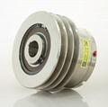 BDCV high torque multi-disc pneumatic clutch
