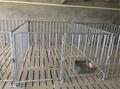 栏位系统育肥大栏 3