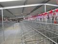栏位系统限位栏 2
