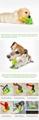 Dog water floating toy dog brushing Pet toys