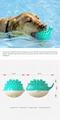 Spray toy Floating toy Pet Molar toy 4