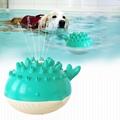 Spray toy Floating toy Pet Molar toy 1
