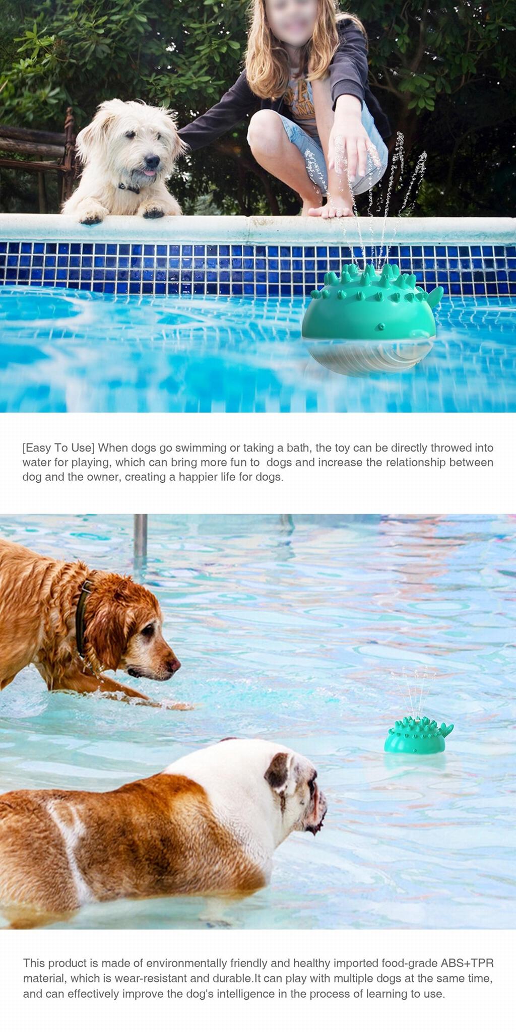 Spray toy Floating toy Pet Molar toy 6