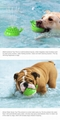Spray toy Floating toy Pet Molar toy 5