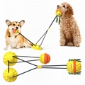 Suction Cup Dog Toy  Double Suction Cup Double Ball toy