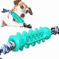Bite-resistant Dog Toothbrush Dog Toothbrush Set Serrated Molar Stick with Rope