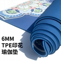 Home Gym Slimming Exercise Pilates Fitness Pad 6mm