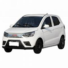 New energy electric four-wheel adult transportation fully enclosed gasoline-elec