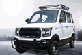 Electric four-wheeled vehicle, new